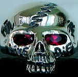 105R. Custom Skull Ring Zipperhead Bolt.jpg